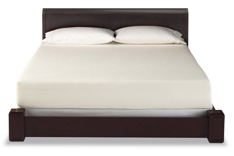 Best Rated Mattress For Back Pain In